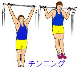 背筋を鍛える方法1